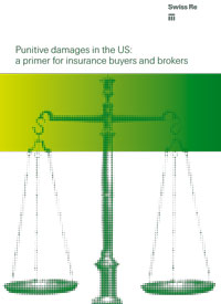 Punitive Damages in the US